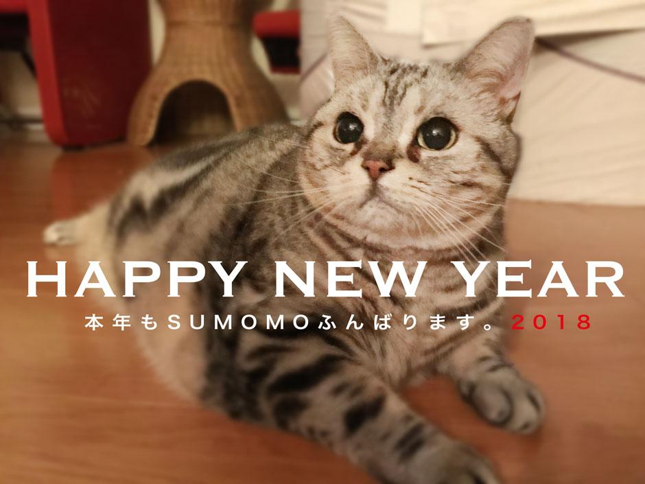 sumomo365_20180101_940.jpg