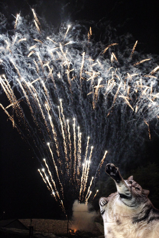 sumomo365_201808_fireworks_01.jpg