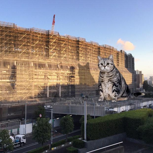 sumomo365_201810_kokuritu_st_03b.jpg