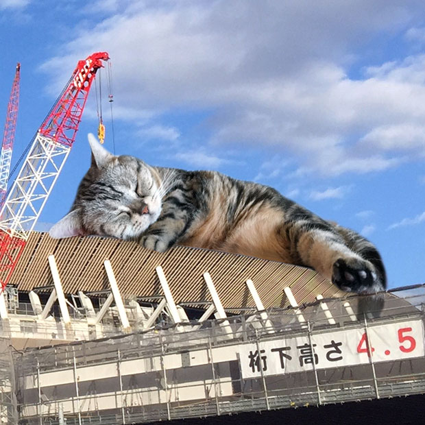 sumomo365_201812_kokuritu_st_05b.jpg