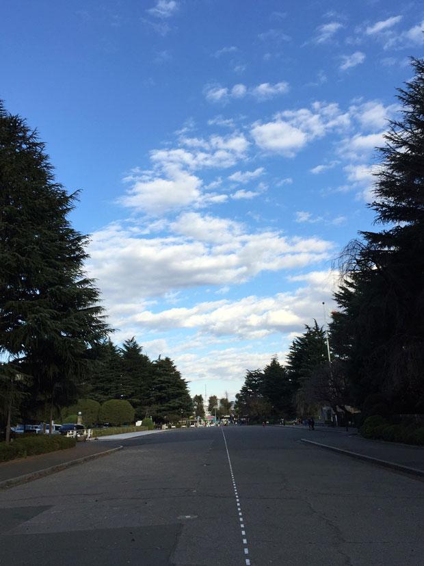 sumomo365_201812_kokuritu_st_07.jpg