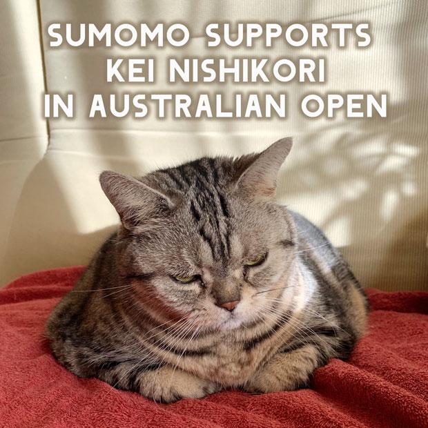 sumomo365_201901_AO_01.jpg