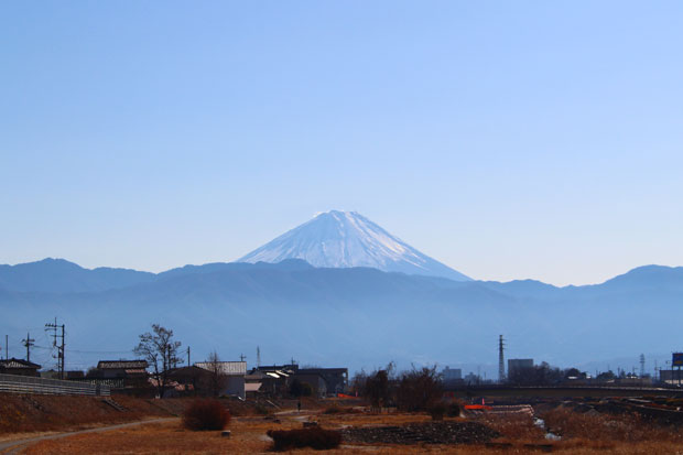 sumomo365_201901_New_Year_05.jpg