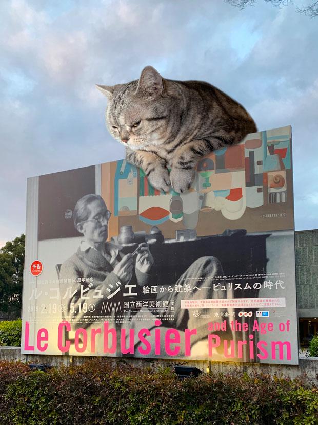sumomo365_201902_Le_Corbusier_00.jpg